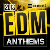 2013 EDM Anthems - EP von Various Artists