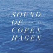 Sound Of Copenhagen Vol. 12 by Various Artists