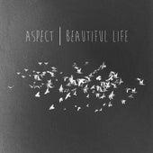 Beautiful Life by Aspect
