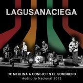 De Merlina a Conejo En El Sombrero, Auditorio Nacional 2013 by La Gusana Ciega