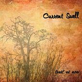 Trust Us Now by Current Swell