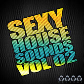 Sexy House Sounds, Vol. 2 von Various Artists