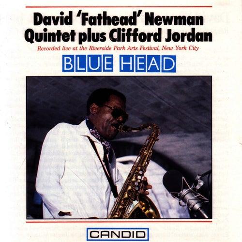 Blue Head by David 'Fathead' Newman