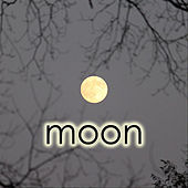 Pieces of Eight by Moon