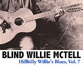 Hillbilly Willie's Blues, Vol. 7 by Blind Willie McTell