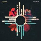 Transpose EP (EP) von Bad Suns