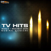 TV Hits de Various Artists