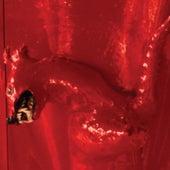 A Red Score In Tile by William Basinski