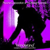 Wonderland (DJ Addambombb's Jabberwhompy Remix) by Psyche Corporation