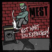 Not What You Expected by M.E.S.T.