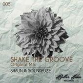 Shake The Groove van Shaun