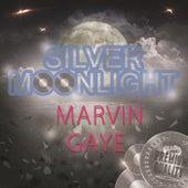 Silver Moonlight de Marvin Gaye