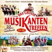 Das große Musikantentreffen - Folge 33 by Various Artists