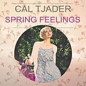 Spring Feelings by Cal Tjader
