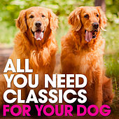 All You Need Classics: For Your Dog by Various Artists