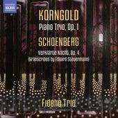 Korngold: Piano Trio - Schoenberg: Verklärte Nacht von Fidelio Trio