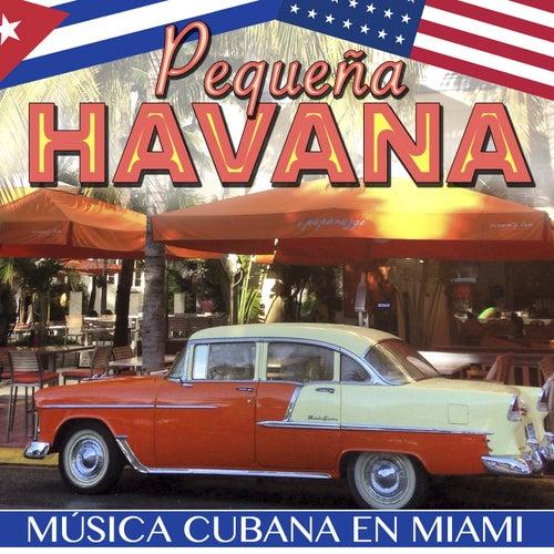 Little Havana. Música Cubana en Miami by Various Artists