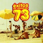 Éxitos del Verano del 73 by Various Artists
