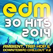 EDM090 EDM Ambient, Trip Hop & Downtempo Chillout, Vol. 2 (30 Top Hits 2014) by Various Artists