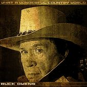 What a Wonderful Country World by Buck Owens