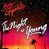 The Night Is Young de Big Gigantic