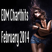 Edm Charthits February 2014 by Various Artists