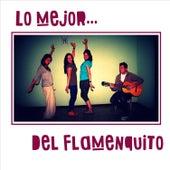 Lo Mejor del Flamenquito de Various Artists