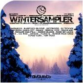 Winter Sampler, Vol. 4 von Various Artists