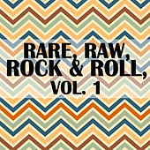 Rare, Raw, Rock & Roll, Vol. 1 by Various Artists