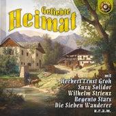 Geliebte Heimat by Various Artists