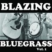 Blazing Bluegrass, Vol. 1 von Various Artists