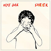 Shriek by Wye Oak
