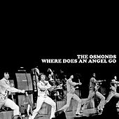 Where Does An Angel Go de The Osmonds