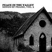 Peace In The Valley: Songs Of Praise, Vol. 2 de Various Artists