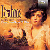 Brahms: Liebeslieder by Chamber Choir of Europe