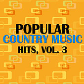 Popular Country Music Hits, Vol. 3 von Various Artists