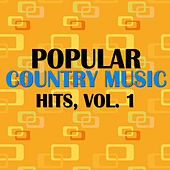 Popular Country Music Hits, Vol. 1 von Various Artists