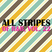 All Stripes of R&B, Vol. 22 de Various Artists