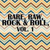 Rare, Raw, Rock & Roll, Vol. 1 de Various Artists