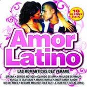 Amor latino (Las Romanticas del Verano) by Various Artists