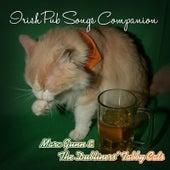 Irish Pub Songs Companion by Marc Gunn