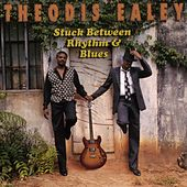 Stuck Between Rhythm and Blues by Theodis Ealey