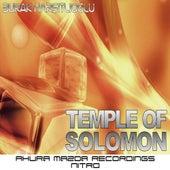 Temple Of Solomon by Burak Harsitlioglu