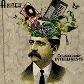 Extraordinary Intelligence - EP by Anitek