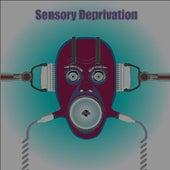 Sensory Deprivation by Mark Fry