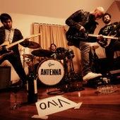 Vivo by Antenna