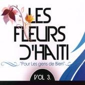 Les fleurs d'Haïti, vol. 3 (Pour les gens de bien) by Various Artists