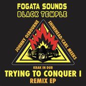 Trying to Conquer Remix EP by Various Artists