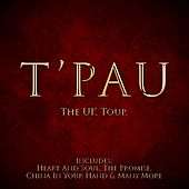 The UK Tour van T'Pau