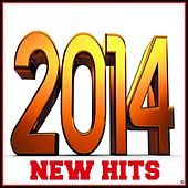 New Hits 2014 by Various Artists